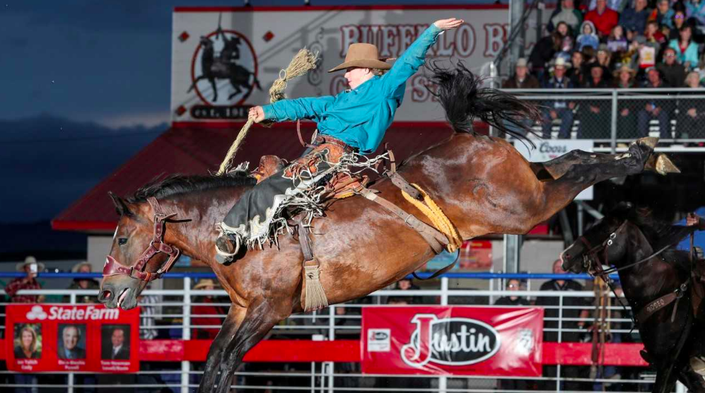 Cody Stampede Results Dawson Hay On Track For Next Family